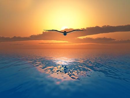 Duif vliegen over de zee zonsondergang op de achtergrond