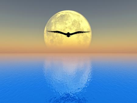vogel vliegen over de zee op volle maan achtergrond Stockfoto