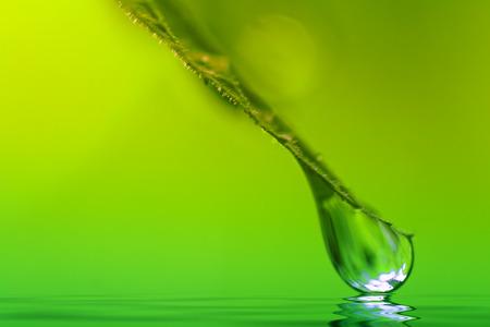 gotas de agua: gota de agua de cerca sobre fondo verde