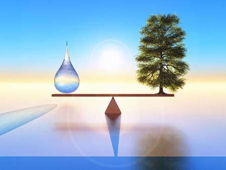 balanced: a drop of water and a tree balanced on seesaw