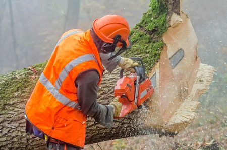 een houthakker aan het werk
