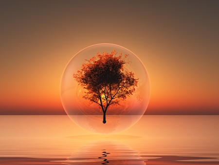 shere: a tree inside a bubble on sunset background Stock Photo