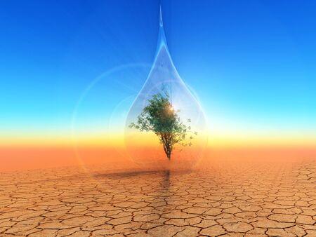 desolate: a tree inside a bubble over the desert.