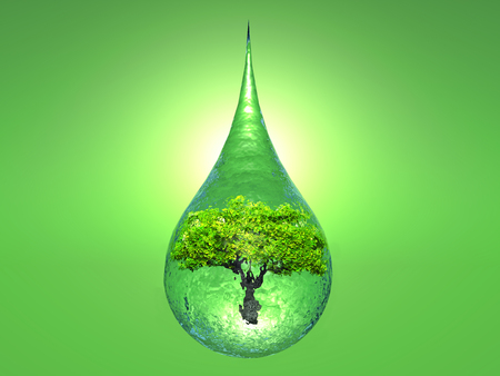 the biosphere: a tree inside a drop of water on green background