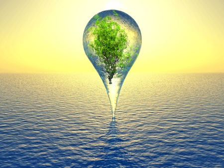plant inside a drop of water over the sea