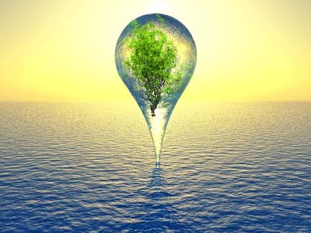 planta dentro de una gota de agua sobre el mar Foto de archivo