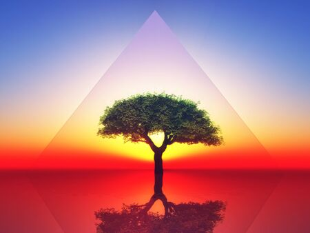 frendly: a tree inside a transparent triangle on sunset background Stock Photo