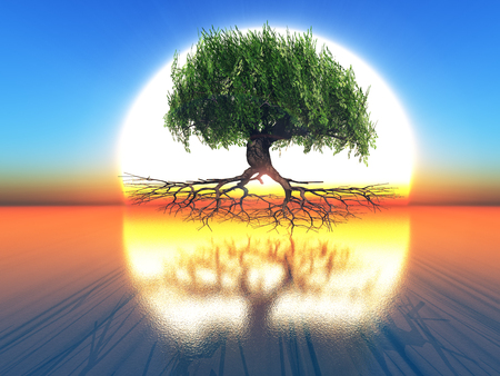 frendly: tree on sunset background