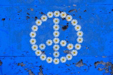flower power: symbol  flower power made with daisies on a wall background covered with peeling paint Stock Photo