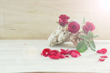 ladylike: Red roses and rocks on wood background : With lens flare