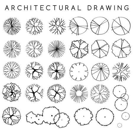 Zestaw architektonicznych ręcznie rysowanych drzew: ilustracja wektorowa