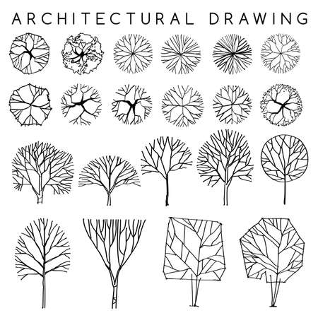 Set of Architectural Hand Drawn Trees : Vector Illustration Stock Illustratie