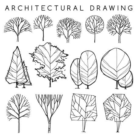 Set of Architectural Hand Drawn Trees: Vector Illustration