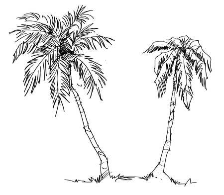 Set of Hand Drawn Trees : Vector Illustration Illustration