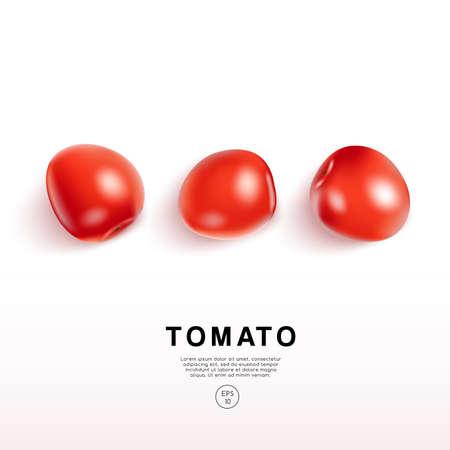Realistic Tomato on White Background : Vector Illustration