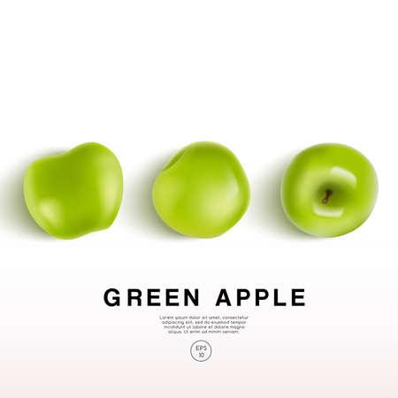 Realistic Green Apple on White Background : Vector Illustration Illustration