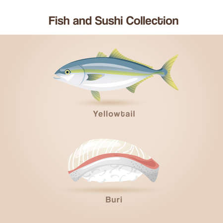 Fish and sushi set : Vector Illustration