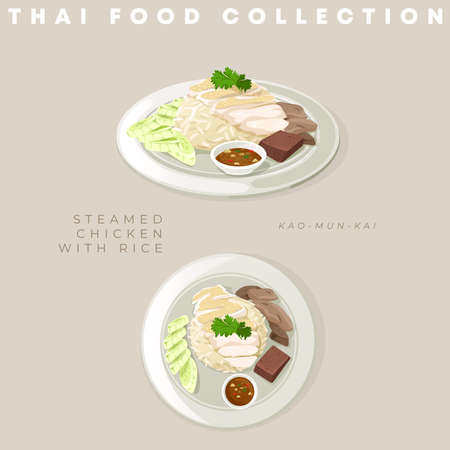Traditional Thai food collection : Vector Illustration