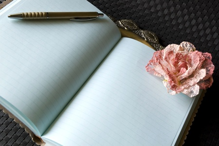 Open the blank page of journal.