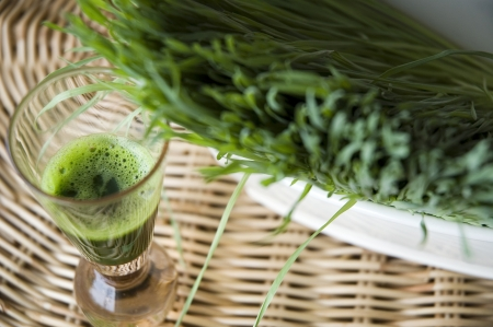 close up wheatgrass juice in shot glass Stock Photo