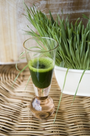 glass of wheatgrass juice with fresh wheatgrass Stock Photo