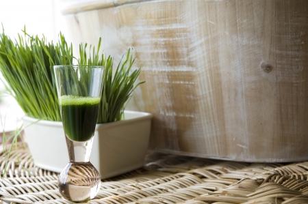 wheatgrass juice in shot glass with fresh wheatgrass background