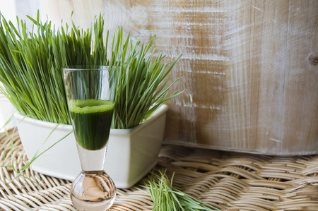 wheatgrass juice natural drink with fresh wheatgrass in whit pot