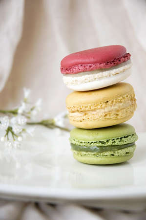 french macarons on white plate with little flowers background photo