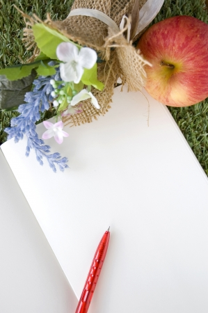 blank white page with red pen and fresh apple on grass