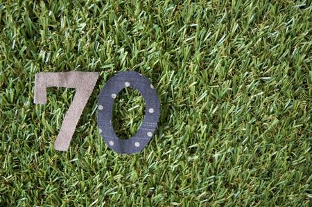 seventy: taglio tessuto in numero di forma settanta su erba verde Archivio Fotografico