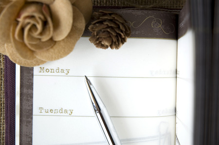 close up monday on page of planner with pen
