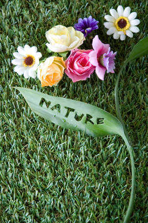 flowers with nature wording die cutting on leaf photo