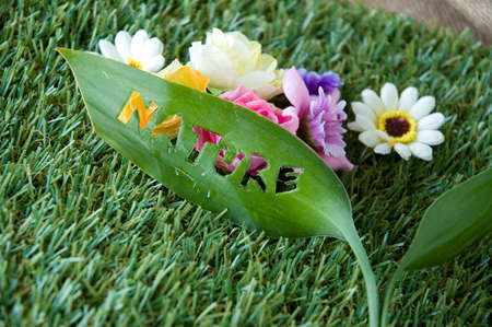 die cut: leaf with wording nature die cut put with flowers background Stock Photo