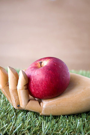 fresh red apple put in wooden hand on grass photo