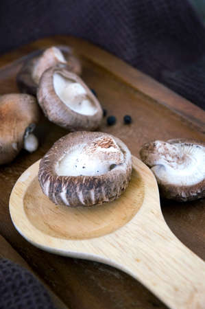 shitake: close up raw shitake mushroom on wooden spoon Stock Photo