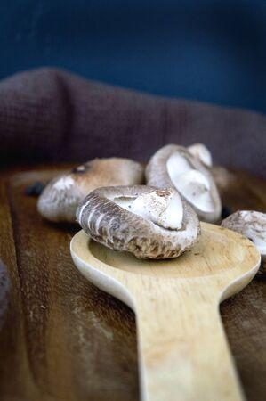 shitake: shitake mushroom on wooden spoon