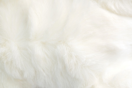 white fur: close up white fabric soft and puffy texture Stock Photo