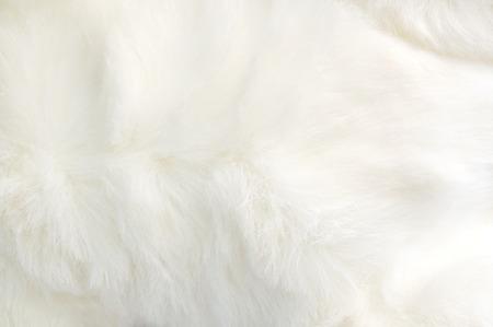 manteau de fourrure: fermer tissu blanc doux et gonfl�s texture Banque d'images
