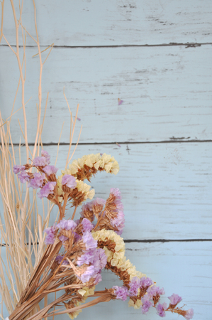 dried flower arrangement: Sweet color of Statice flowers with space for text on light blue background Stock Photo