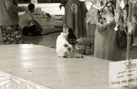 PHUKET, THAILAND FEBRUARY 15 2013: A boy plays with a cat at Buddha Park, the location of Phukets iconic symbol of Buddhism, the Big Buddha Monument.