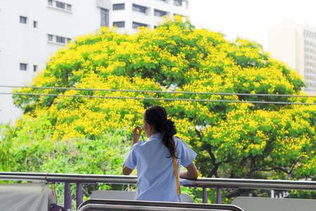 MO CHIT SKYTRAIN, BANGKOK, THAILAND 18 maart 2012: Een Thaise vrouw kijkt bij een grote boom in een aangrenzend park tijdens het wachten voor de BTW Skytrain bij de Mo Chit station in Bangkok.