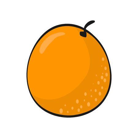 Cartoon orange isolated on white background. Fresh Fruits flat Illustration.