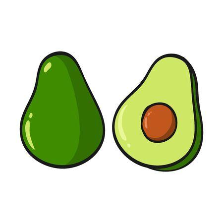 Cartoon avocado isolated on white background. Fresh Fruits Illustration.