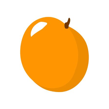 Cartoon orange isolated on white background. Fresh Fruits Illustration.