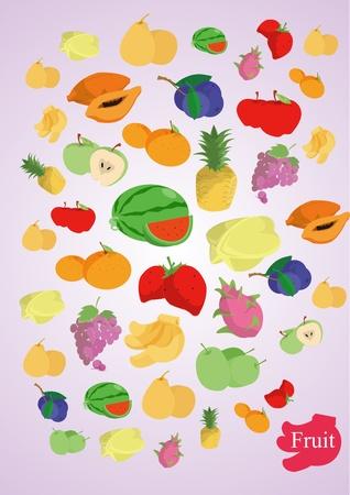 vector coloful fruits