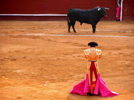 matador: Een stand off tussen stierenvechter en stier Stockfoto