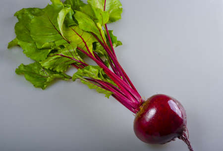 Botwinka (for soup from young red beet plants, Polisch)