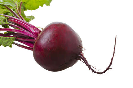 gastronome: Botwinka (for soup from young red beet plants, Polisch) Stock Photo