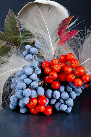 rowanberry: Rowanberry and other fruits