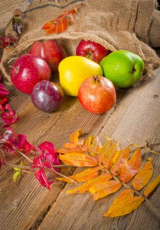 Fruits Stock Photo - 11205310